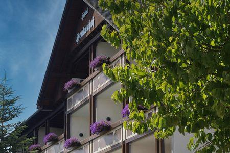 Landhotel-Henkenhof in Willingen | Sauerland